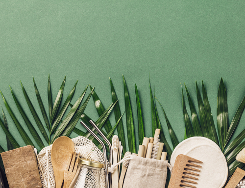 Bamboo Products for Eco-Friendly People